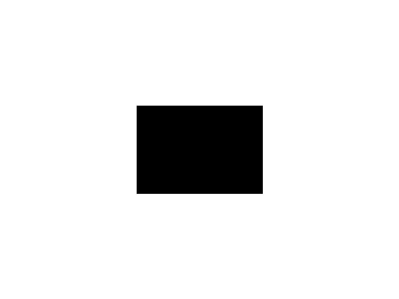 FAST videa