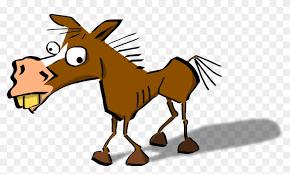 8.kyu – bláznivý kůň