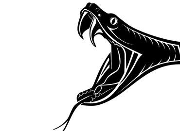 8.kyu – Hadí kousnutí