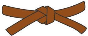 1.kyu - hnědý pásek