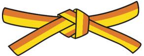 6.kyu - žlutooranžový pásek